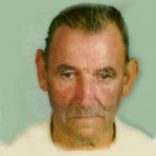 <br>José Francisco Fernandes