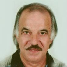 <br>João Manuel da Silva