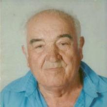 <br>José Viegas Raminhos