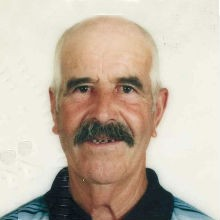 <br>José Emídio Gonçalves