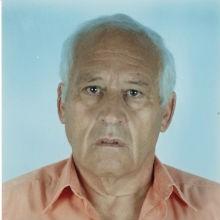 <br>Fernando Manuel Gameiro Freire