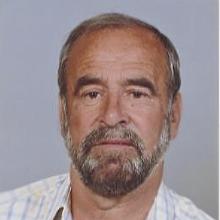 <br>Joaquim Romão Pereira da Silva