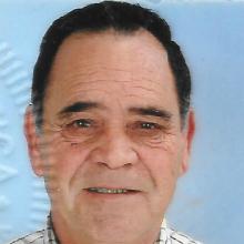 <br>Vítor Manuel Aleixo dos Anjos