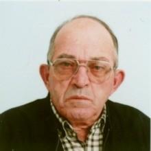 <br>José João Pereira Rodrigues