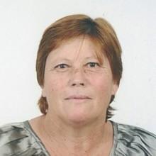 <br>Maria de Fátima Amorim Pereira
