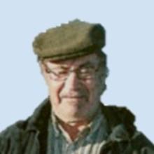 <br>José Viegas Cavaco