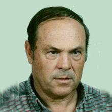 <br>Mário Romão Gonçalves Branco