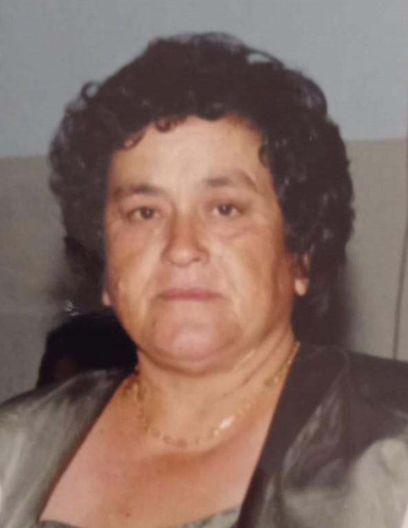 <br>Maria João Martins Fernandes do Brito