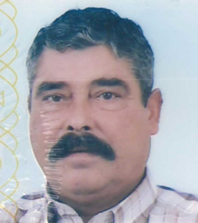 Manuel Fernando de Almeida