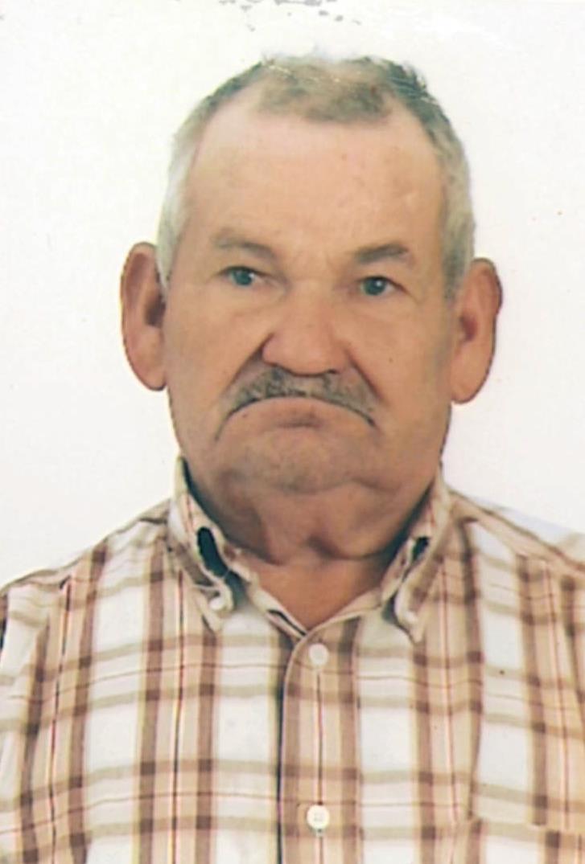 <br>José Vitorino Arrais Pereira