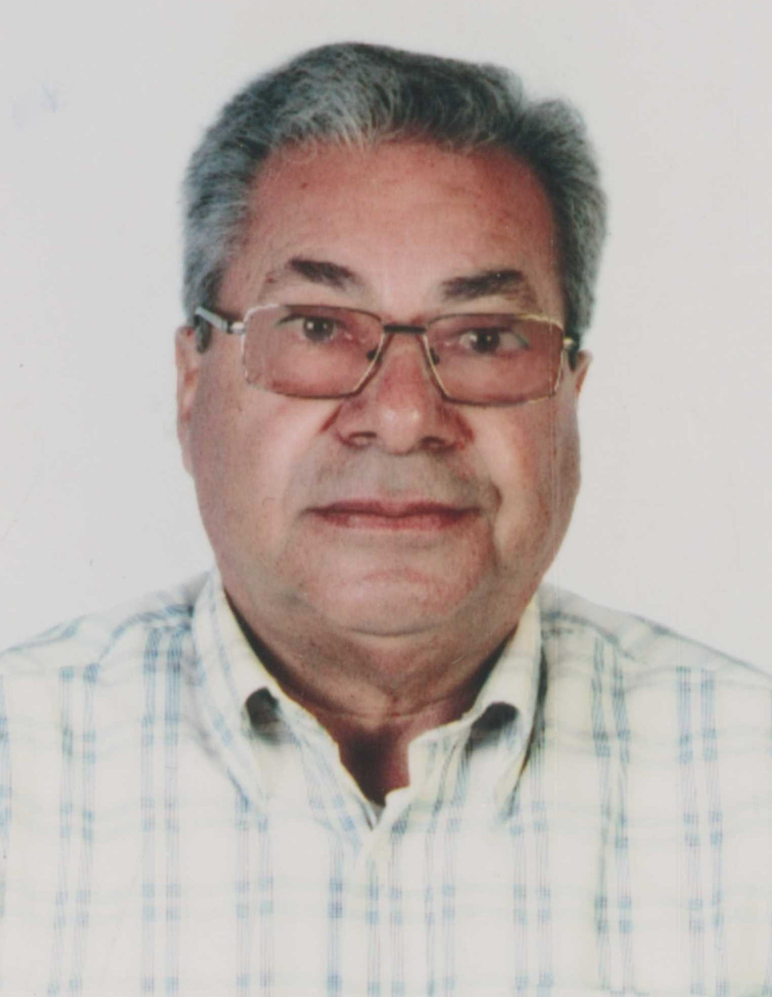 José António Viegas Gago